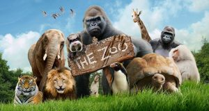 Sognare uno Zoo
