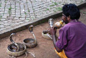 incantatore di serpenti